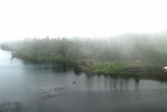 2009.7.5 霧の八幡沼