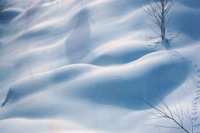 安比スキー場にて