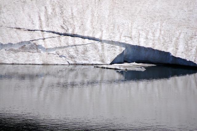 ガマ沼の残雪